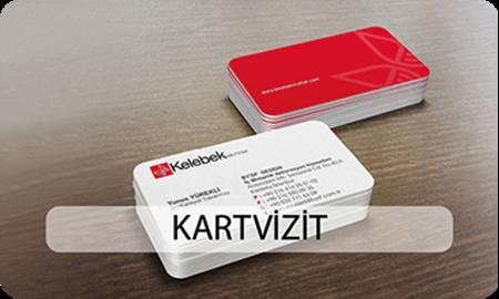 Picture for category KARTVİZİTLİKLER